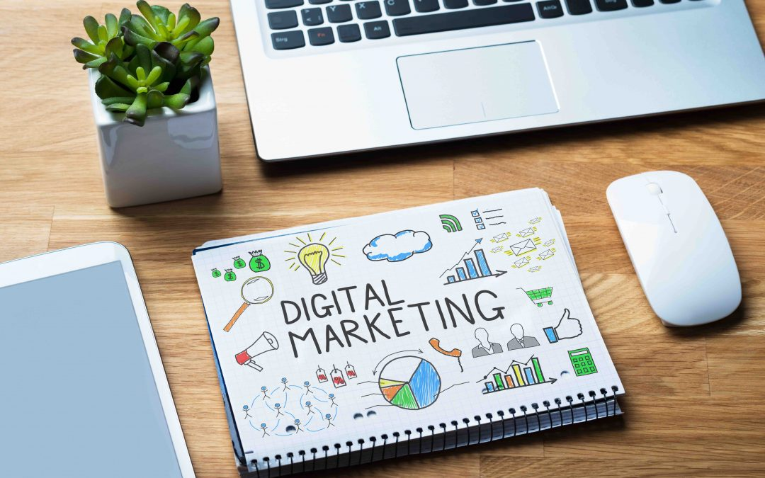 How Green Is Your Digital Marketing Agency?